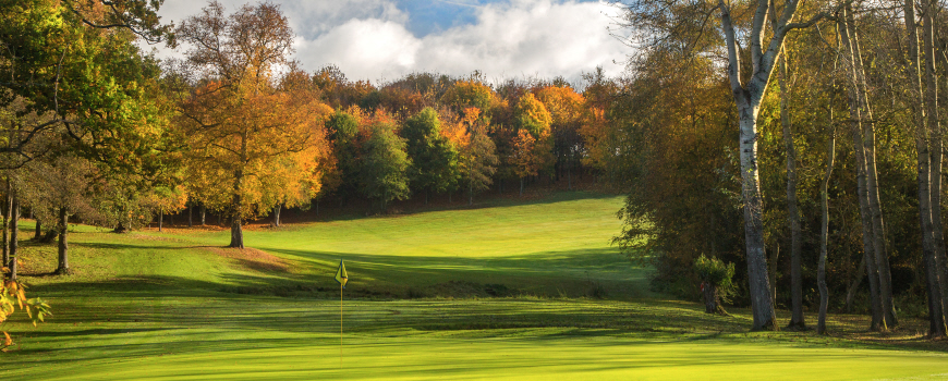 The Park and The Wood Course at Sandford Springs Hotel and Golf Club Image