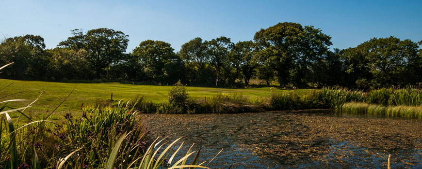 Course at Trethorne Golf Club Image