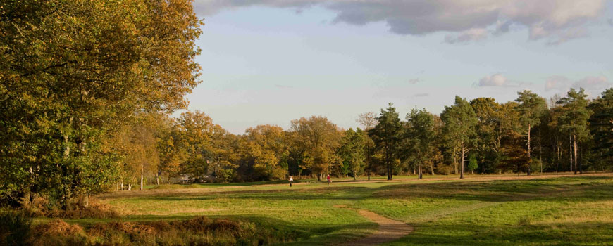 Royal Ashdown Forest Golf Club