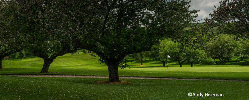 Course at Broke Hill Golf Club Image