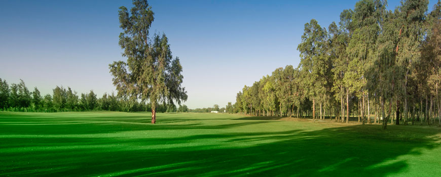 Oued Fes Golf City